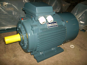 Ie2 (CE) Y2 Three Phase Induction Motor (Y2-160-4) pictures & photos