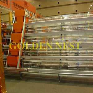 Henan Jinfeng Battery Chicken Cage Used as Poultry Equipment in Chicken Farm pictures & photos