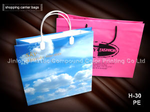 Custom Shopping Bag with Hard Handle ISO9001: 2008 pictures & photos