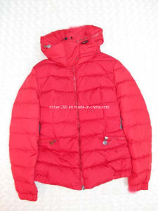 Lady′s Winter Down Jacket