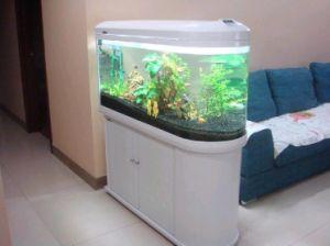 LED Aquarium Light 80W