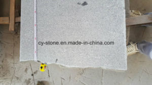 Flamed G654 Padang Dark Small Slab Granite for Flooring/Wall/Countertops pictures & photos