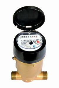 Volumetric Piston Plastic Water Meter (PD-SDC-H-LXHT-8+1) pictures & photos