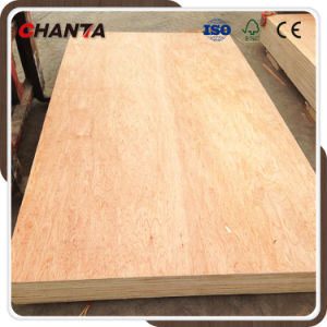 Furniture Grade Bintangor Plywood with Fsc Certificate pictures & photos