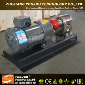 Yonjou Vegetable Oil Pump pictures & photos
