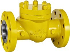 Class 600 Flanged Swing Check Valve