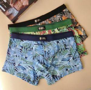 Cotton Underwear pictures & photos