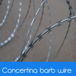 Razor Wire Concertina / Razor Barb Wire Concertina pictures & photos