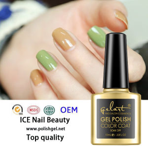 Gel Polish UV Nail Gel Updating Colors Gel Nail Polish pictures & photos