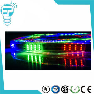 Outdoor Decoration RGB 5050 LED Strip White LED Strip 110V 220V 240 Volt 3528 60LEDs/M LED Strip pictures & photos