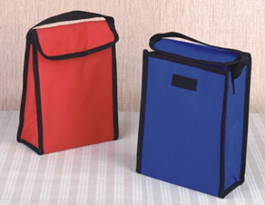 Thermal Insulated Ice Cooler Bag pictures & photos