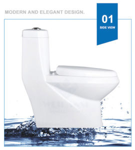 Weidansi Ceramic Wash Down S-Trap One Piece Toilet (WDS-T6112) pictures & photos