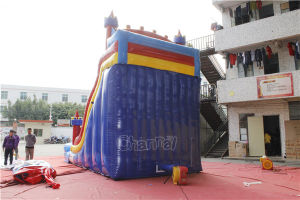 Castle Inflatable Water Slide/Giant Inflatable Water Slide for Sale Chsl708 pictures & photos