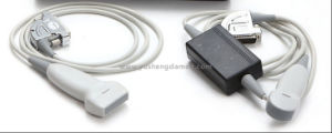 Ce Approved PC Platform Based Double Connector Portable Digital Ultrasound pictures & photos