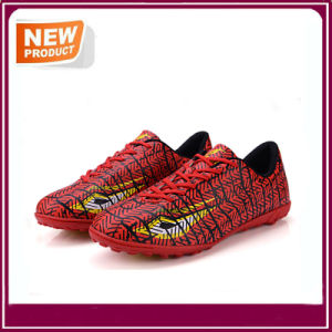 Men′s Sport Indoor Soccer Shoes Wholesale pictures & photos