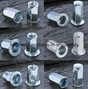 Stainless Steel/Carbon Steel Rivet Nut for Auto/Aviation/Railway pictures & photos