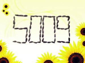 Best Raw Sunflower Seeds 5009 with Full of Particles