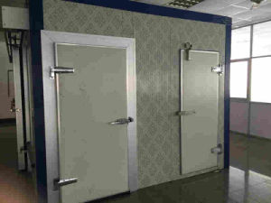 Semi-Sunk/Full-Sunk Hinge Door for Cold Room pictures & photos