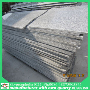 China Black/White/Grey Granite for Floor Tile/ Paving Slab pictures & photos