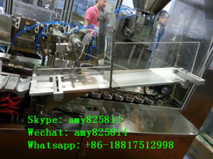 High-Speed Hose Filling and Sealing Machine (B. GFN-100) pictures & photos