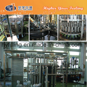 Full Automatic Glass Bottle Apple Juice Filling Machine pictures & photos