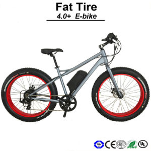 Big Tyre E-Bike Aluminum Alloy 6061 Lithium 36V9ah Battery E-Bicycle Electric Bicycle (TDE12Z) pictures & photos