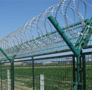 Great Strength Razor Barbed Wire Used for Military Security pictures & photos