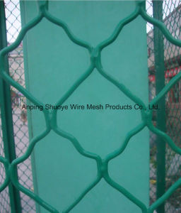 Plastic PVC Coated Chain Link Fence for School pictures & photos