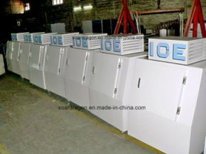 380lbs Capacity Slant Door Ice Merchandiser with Cold Wall System pictures & photos