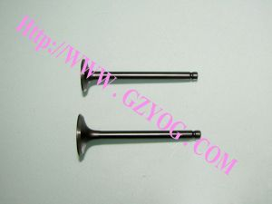 Yog Motorcycle Engine Parts Valves Wh-100 pictures & photos