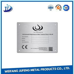 OEM/Customized Anodized Steel Stamping Nameplate with Laser Engraved pictures & photos