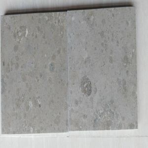 Natural Stone Jura Grey Limestone for Project pictures & photos