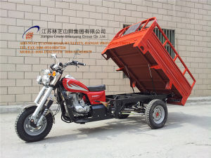 150cc, Three Wheel Motorcycle, China New Style, Cargo Tricycle, High Quality, Hot Sale, Gasoline Trike, Tuk Tuk (SY150ZH-E2) pictures & photos