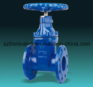 Cast Iron/Ductile Iron Nrs Flanged End Gate Valve pictures & photos