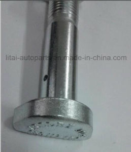 Benz Rear D Bolt with High Strength Grade 10.9 pictures & photos