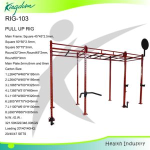 Fitness Equipment/Gym Equipment Rig/Pull up Bar/Ciossfit Rig pictures & photos