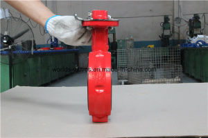 Double Shaft Demco Industrial Butterfly Valve in Red Color pictures & photos