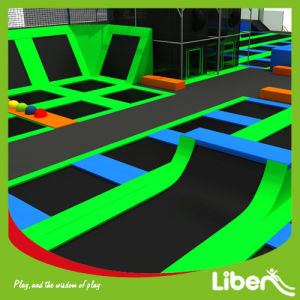China Most Professional Manufacture for Jump Inflatable Bouncer in Trampoline Court Park pictures & photos
