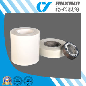 50-500μ M Mylar Insulation Film with UL (CY30G) pictures & photos