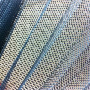 Polyester Pleated Insect Screen Mesh Ll pictures & photos