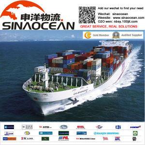 Shipping FM Ningbo Shanghai Shenzheng to Dubai Shipping Agent Forewarder