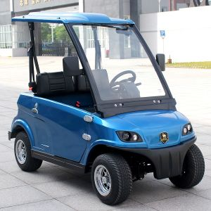 Chinese 2 Seater Road Legal Electric Car with EEC (DG-LSV2) pictures & photos