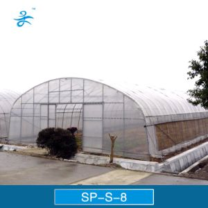 Cheap Film Greenhouse for Flower