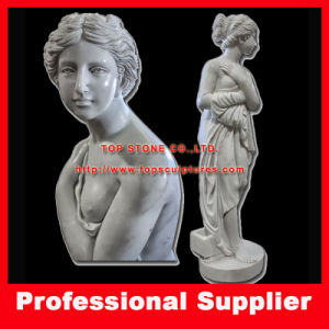 Venus Italian Sculpture Stone Carving for Hotel Project or Garden pictures & photos