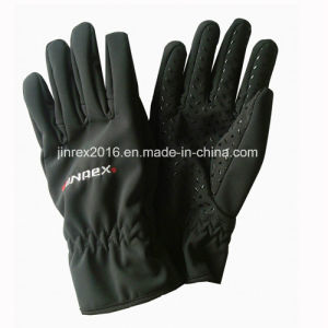 Waterproof Windproof Winter Outdoor Full Lining Sports Glove-Jg11L015 pictures & photos