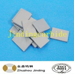 Cemented Carbide Tip for Tamping Machine for Railway pictures & photos