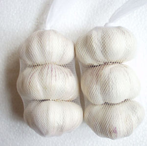 New Crop Fresh Good Quality Chinese White Garlic pictures & photos