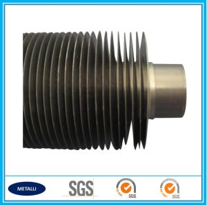 Ll Type Fin Tube with Competitive Price pictures & photos