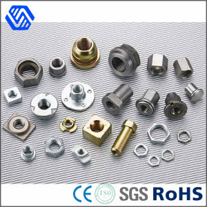 All Kinds Different Material Bolt and Nut China Supplier Steel Nuts pictures & photos