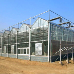 Multispan Aluminum Glass Greenhouse pictures & photos